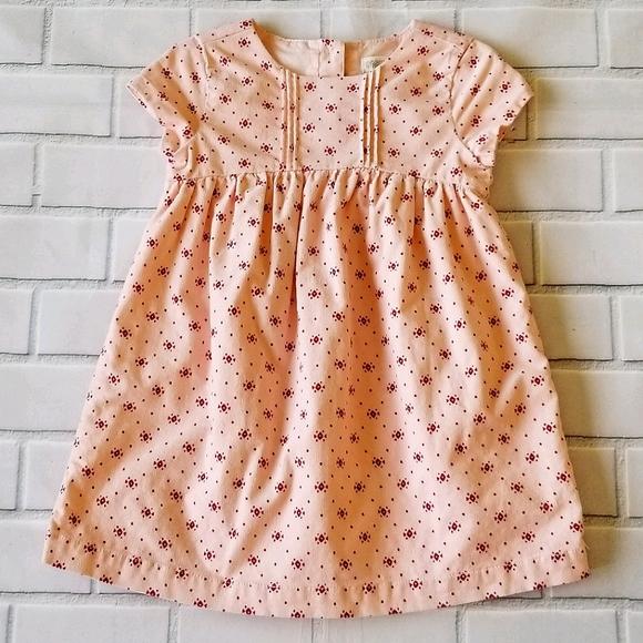 Gymboree Velvety Pink Print Baby Doll Dress 2T